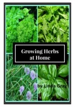 growingherbsathome