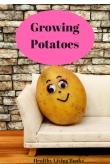 GrowingPotatoes