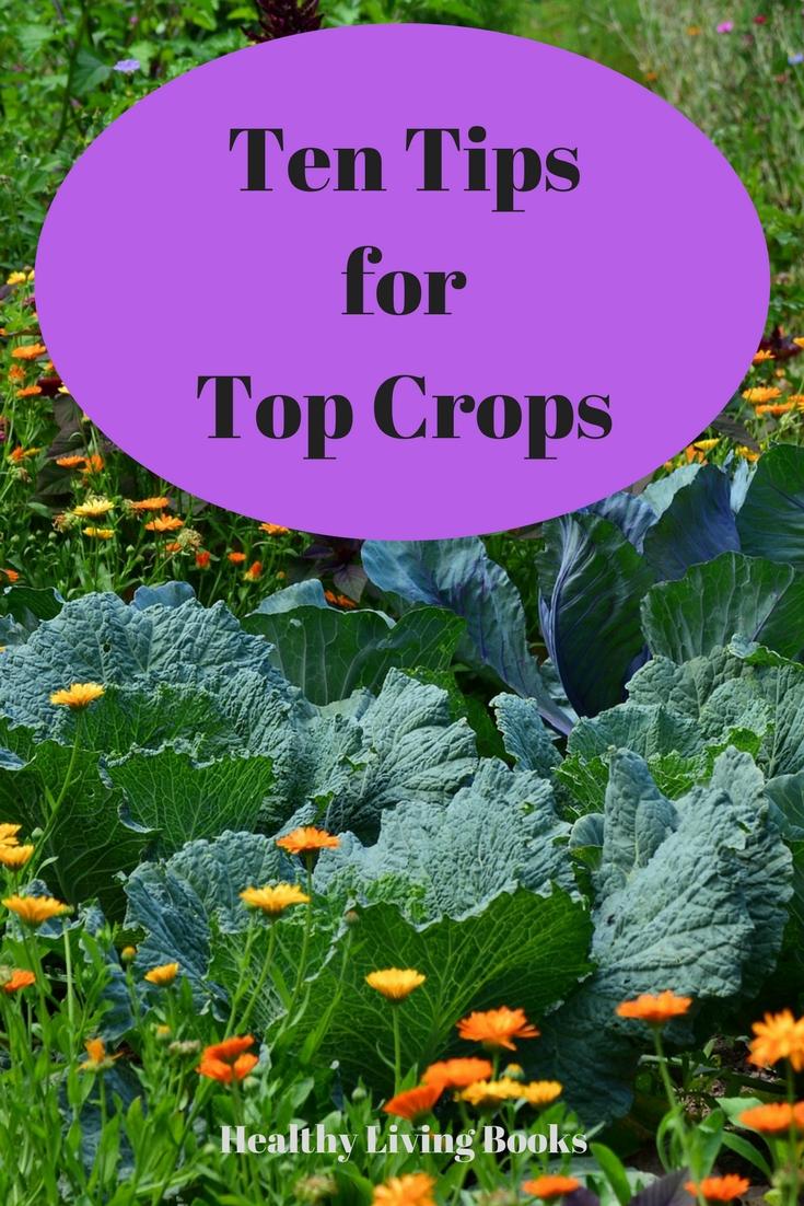 Ten TipsforTop Crops