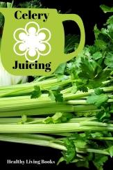 Celery-pinterest