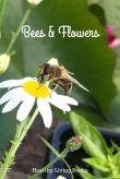 beesandflowers-pin