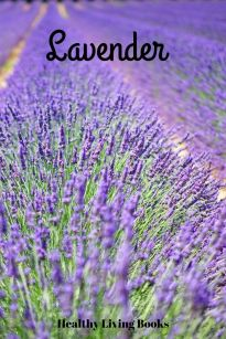Lavender-pin