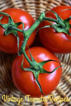 VintageTomatoRecipes-pin